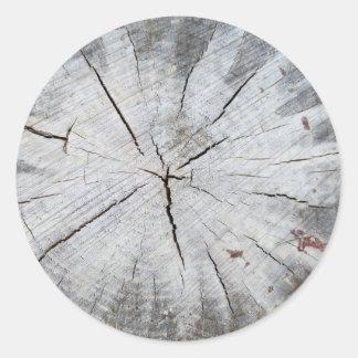 Wood Grain Gray Pine Tree Stump Photo Art 1 Classic Round Sticker