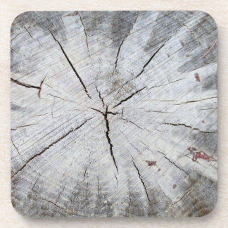 Wood Grain Gray Pine Tree Stump Photo Art 1 Drink Coaster