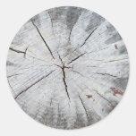 Wood Grain Gray Pine Tree Stump Photo Art 1 Stickers