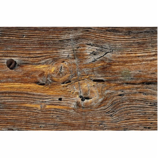 Wood grain, sheet of weathered timber standing photo sculpture