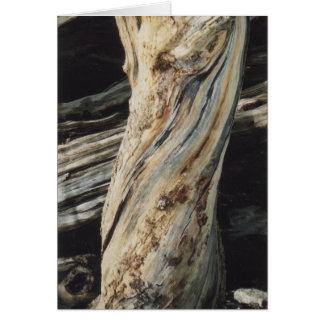 Wood Grains Card