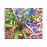 Wood Hyacinths Painting Wrapped Canvas Canvas Print