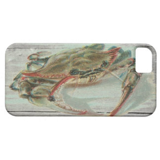 Wood nautical steampunk vintage crab preppy iPhone 5 cover