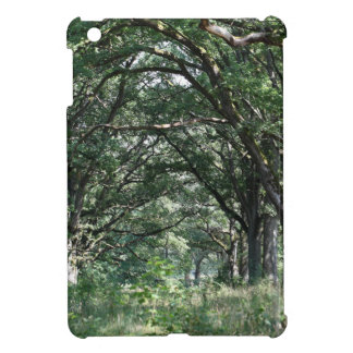 Wood pasture case for the iPad mini
