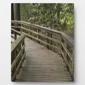 Wood Path Display Plaque