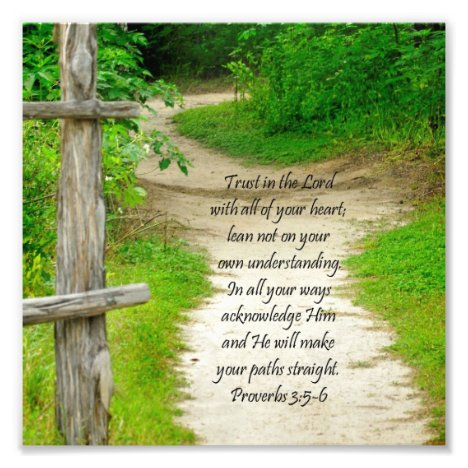 Wood Path Proverbs 3:5-6 Bible Verse Photo Print