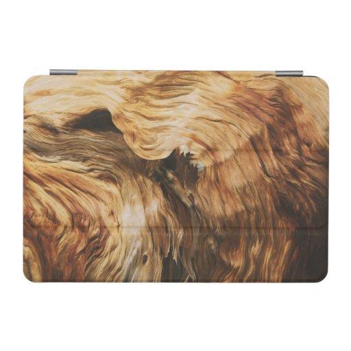 wood-pattern-texture-nature-old iPad mini cover