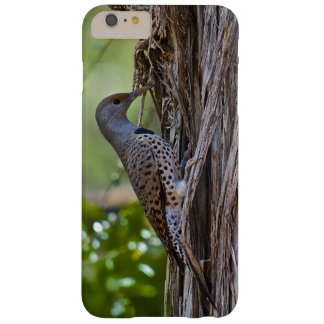 Wood Pecker Barely There iPhone 6 Plus Case