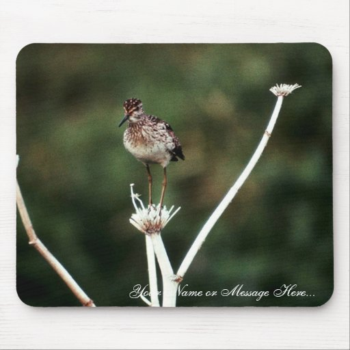 Wood Sandpiper Mouse Pad