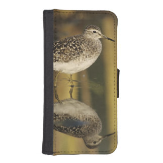 Wood Sandpiper, Tringa glareola,adult, Samos, iPhone SE/5/5s Wallet Case