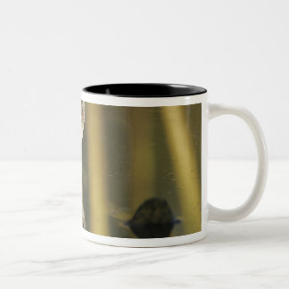 Wood Sandpiper, Tringa glareola,adult, Samos, Two-Tone Coffee Mug