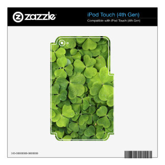 Wood Sorrel iPod Touch 4G Decals