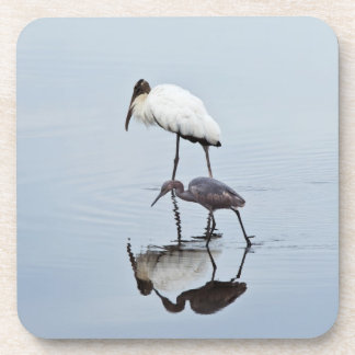 Wood Stork and Blue Heron Wading Coaster