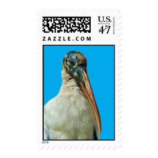 Wood Stork Bird Postage
