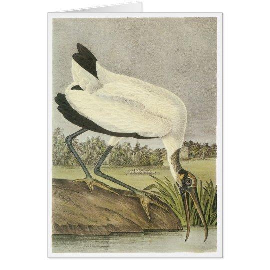 Wood Stork, John Audubon Card