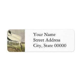 Wood Stork, John Audubon Custom Return Address Labels