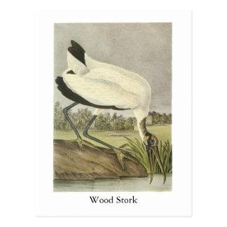 Wood Stork, John Audubon Postcard