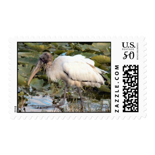 Wood Stork Postage Stamps