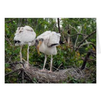 Wood Stork ValentineCard Card