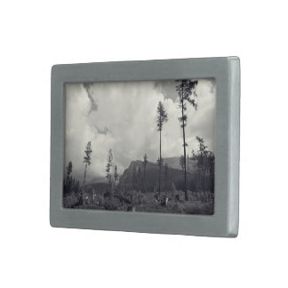 Wood Themed, A Black And White Picture Where Sever Rectangular Belt Buckle