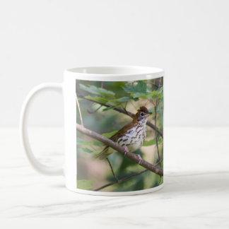 Wood Thrush Coffee Mug