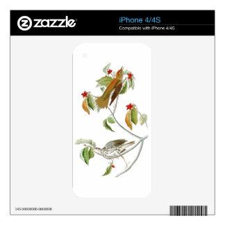 Wood Thrush John James Audubon Birds of America Decal For iPhone 4