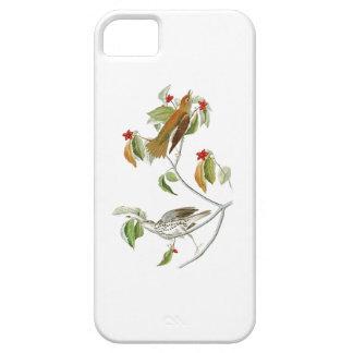 Wood Thrush John James Audubon Birds of America iPhone SE/5/5s Case