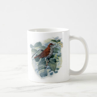 Wood Thrush on a Twig Coffee Mug