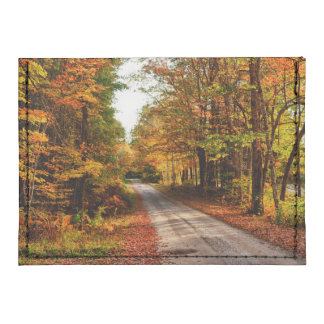 Wood trail with fall foliage tyvek® card case wallet