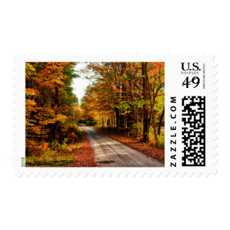 Wood trail with fall foliage postage