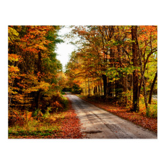 Wood trail with fall foliage postcard