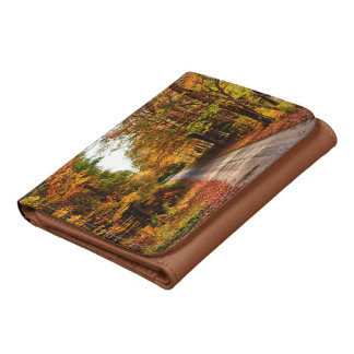 Wood trail with fall foliage wallets