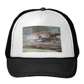 Wood Trucker Hat
