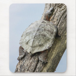 Wood Turtle Mouse Pad