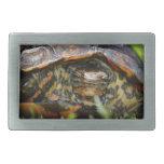 Wood turtle ornate head on in grass belt buckle