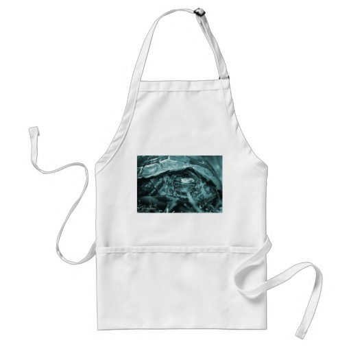 Wood turtle ornate head on in grass blue apron