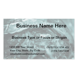 Wood turtle ornate head on in grass blue business card