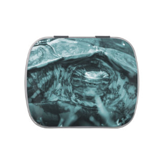 Wood turtle ornate head on in grass blue jelly belly candy tins