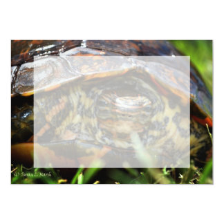 Wood turtle ornate head on in grass card