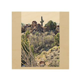 Wood Wall Art - The Sonoran Desert