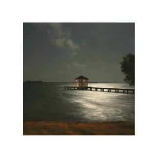 wood wall art with photo of moonlit Belize cabana