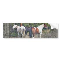 Wood wall horses 1 bumper sticker