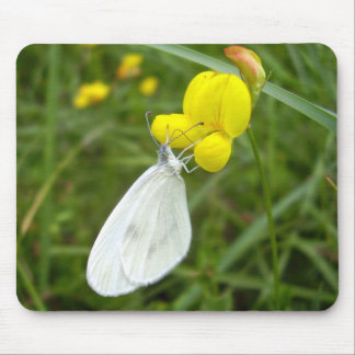 Wood White Butterfly Mouse Mat