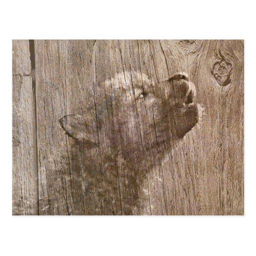 Wood Wolf Pup Art Postcard
