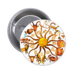 Wood Zodiac wheel of life 2 Inch Round Button