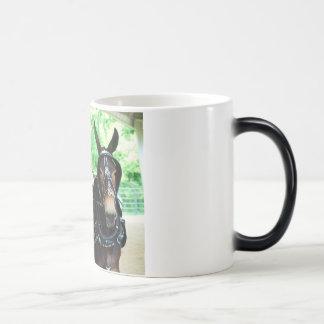 woodbury tn mule show magic mug