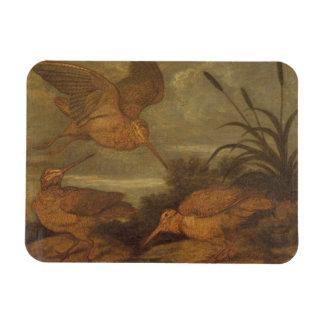 Woodcock at Dusk, c.1676 (oil on canvas) Rectangular Photo Magnet