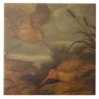 Woodcock at Dusk, c.1676 (oil on canvas) Ceramic Tiles