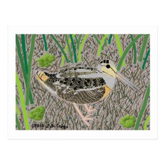 Woodcock Postcard