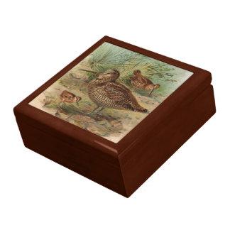 """""""Woodcock"""" Vintage Bird Illustration Keepsake Box"""